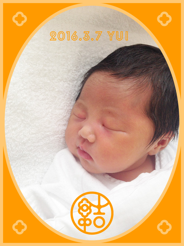 Congratulations New Baby Card・誕生フォトカード