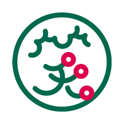 Kiyoe's NAMON: Personal Logo designed for Kiyoe