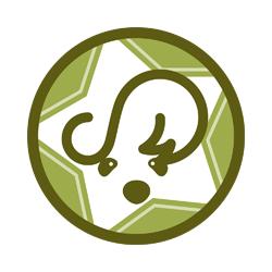 SKIP(Cocker Spaniel)紋